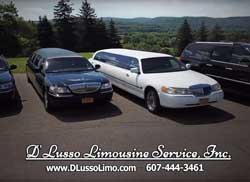 D'Lusso Limo