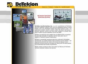 DeTekion Security Systems, Inc.